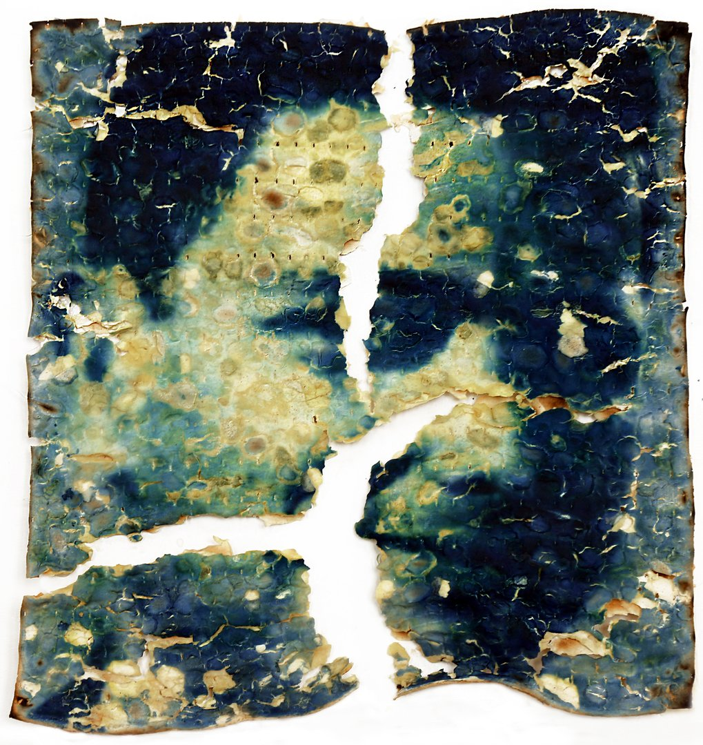 Cyanotype portrait of Herman Dichter on matzo cracker.jpg