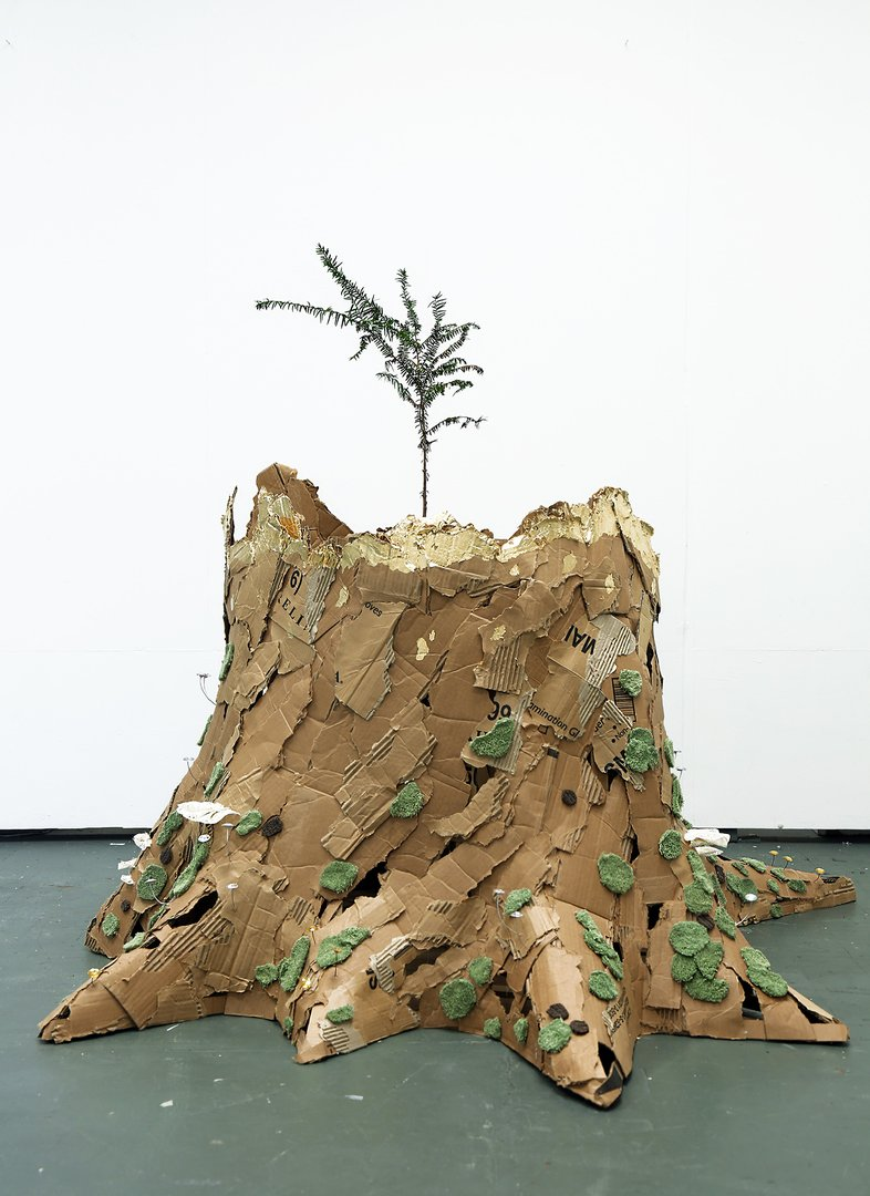Cardboard sculpture of a stump with a small live tree inside.jpg