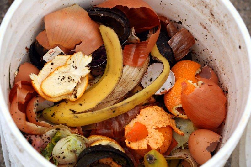 Bucket of food waste