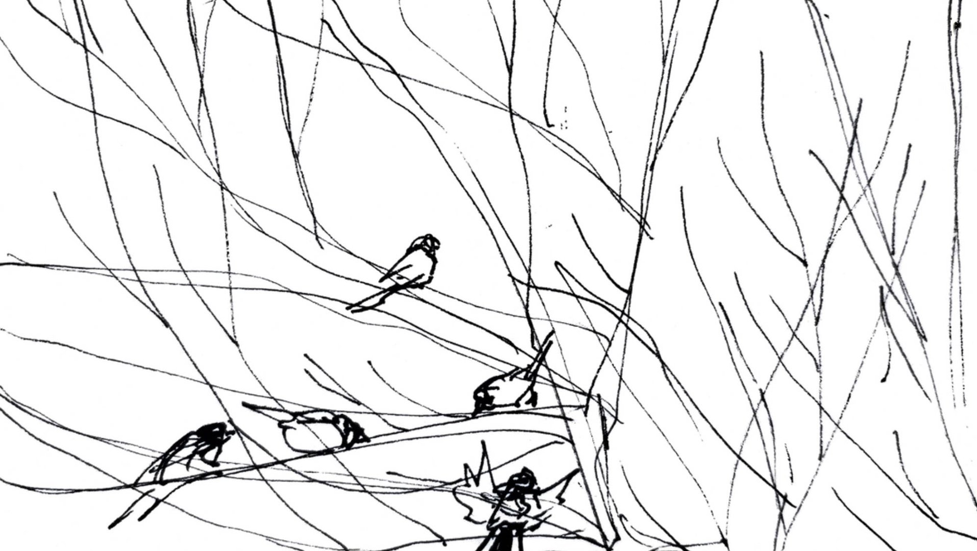 Birds in branches in black on white systems1.jpg