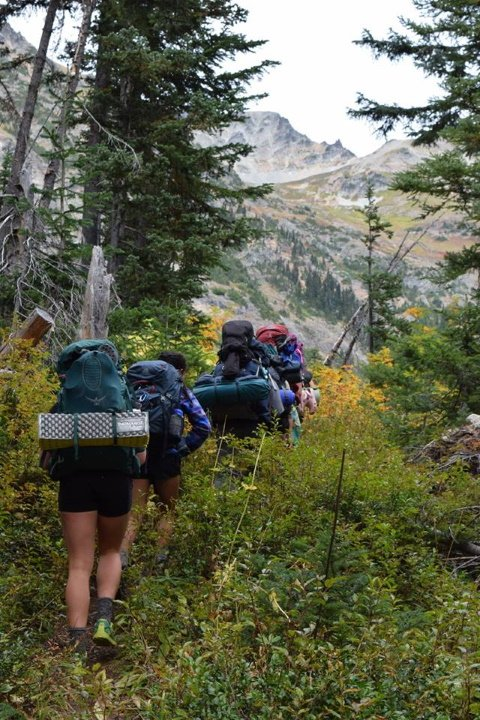 A line of WOOT participants (WOOTers) hike with backpacks through the low lying brush of the baker wilderness. ahead lies a mountain pass.